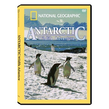 Antarctic Wildlife Adventure - Movie Guide