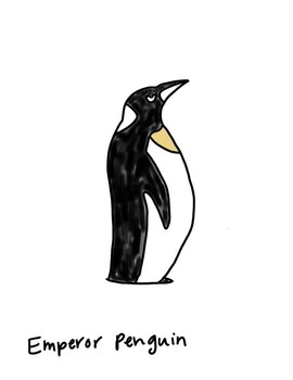 Antarctica Animal Tracing