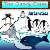 Antarctica Clip Art with a Blue Whale, Penguins, Elephant Seal, and Ice Bergs