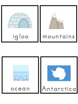 Antarctica Picture Word Bank and Picture Cards