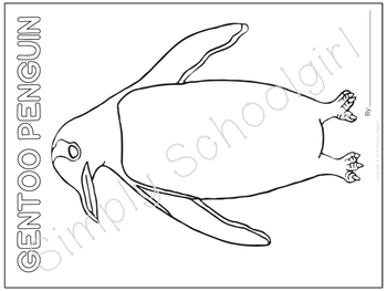 Antarctica Unit Study: Art Pages for Antarctic Animals