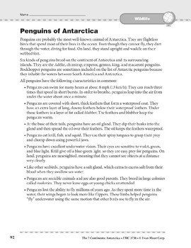 Antarctica: Wildlife: Penguins