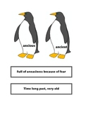 Antarctica by Helen Cowcher: Vocabulary, Writing details/KWL chart