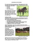 Anthelmintics and Horse Parasites Activity