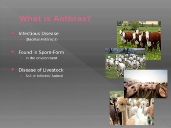Anthrax PowerPoint