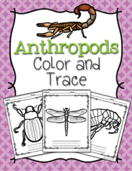 Anthropods Color and Trace