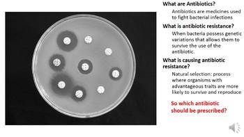 Antibiotic Resistance PowerPoint