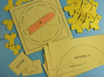 Antigen Binding Board Game