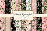 Antique Hummingbirds Digital paper, printable backgrounds