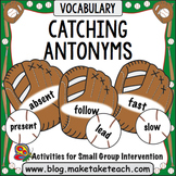 Antonyms- Baseball Game!