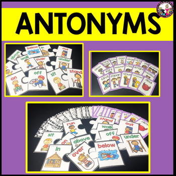 Antonym Cards with Pictures and Words!