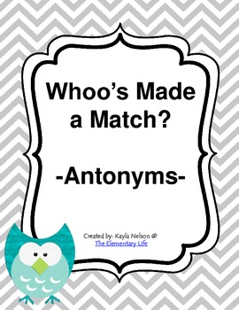 Antonym Center Owl Themed