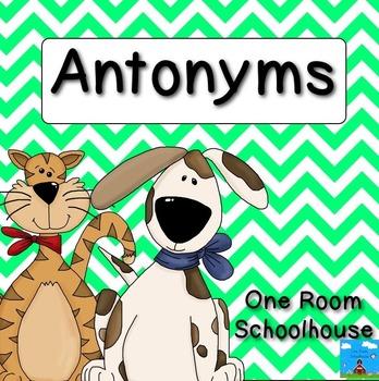Antonym Dogs
