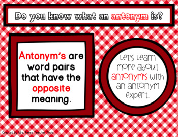 Synonym & Antonym Expert Power Point Lesson with Printables