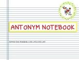 Antonym Notebook