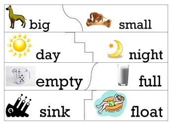 antonym opposites matching cards and worksheet by city teacher