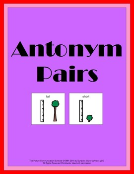 Antonym Pairs