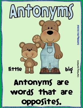 Antonym Poster freebie