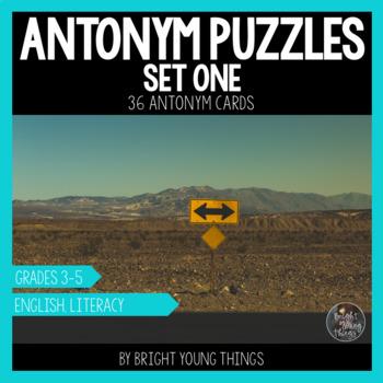 Antonym Puzzles (Set 1) - Matching Activity