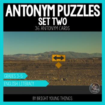 Antonym Puzzles (Set 2) - Matching Activity