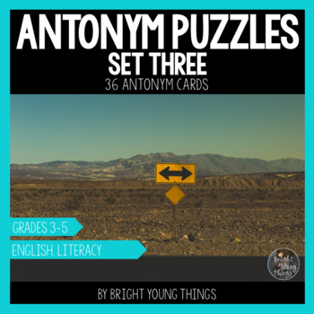 Antonym Puzzles (Set 3) - Matching Activity