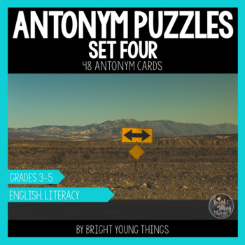 Antonym Puzzles (Set 4) - Matching Activity