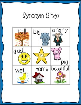 Antonym & Synonym Bundled Set