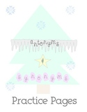 Winter Theme Antonym & Synonym Practice Pages + Matching Activity