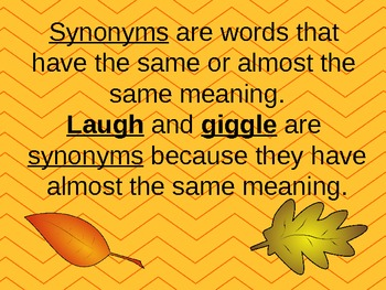 Antonym, Synonym, and Homophone Review