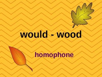 Antonym, Synonym, and Homophone Review