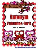 Antonym Valentine Owls