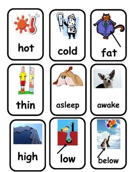Antonym and Synonym Memory Match Game
