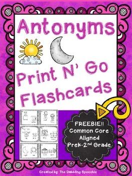 Antonymns Print N' Go Flashcards FREEBIE