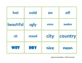 Antonyms Concentration