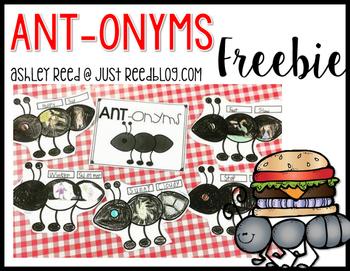 Antonyms Craft FREEBIE
