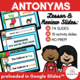 Antonyms Digital Lesson, Review and Activity Presentation in Google Slides