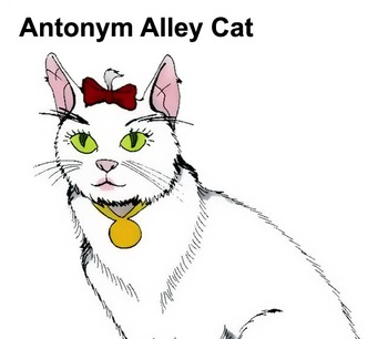 Antonyms, Homonyms & Synonyms Song (MP3)