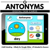 Antonyms / Opposites Digital Learning Google Seesaw