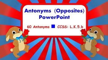 Antonyms (Opposites) PowerPoint (L.K.5.b)