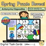 Antonyms Opposites  Vocabulary Puzzle Spring Rainbow BOOM