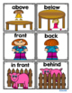Picture Cards for Pocket Charts and Word Work to Practice