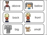 Antonyms Picture Word Flash Cards.