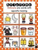 Antonyms Poster