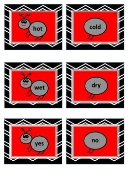 Antonyms Poster and Concentration Game