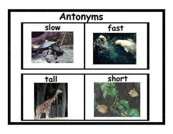 Antonyms Posters