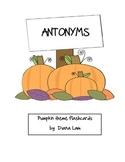 Antonyms - Pumpkin flashcards