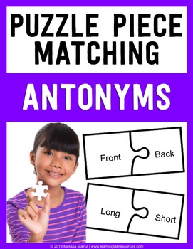 Antonyms - Puzzle Piece Matching Activity