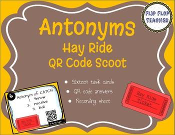Antonyms QR Code Scoot