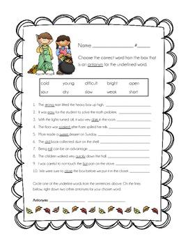 Antonyms Worksheet - Fall Themed!