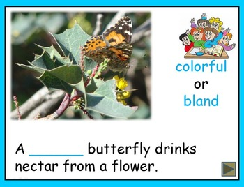 Antonyms and Nature Photos PowerPoint